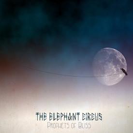 The Elephant Circus