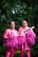 "Theater Mundstuhl: ""Flamongos"", Comedy"