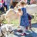 """Und """"FrühjahrsLust"""", Markt für Garten und Kleintiere, mit Kinderprogramm, Vorträgen u.v.m."""